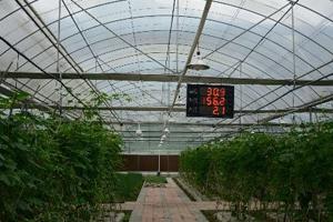 农业大棚bob网app物联解决方案